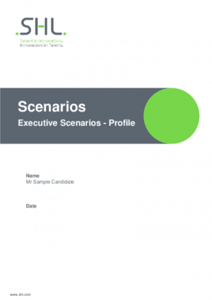 Executive Scenarios - Profile English International