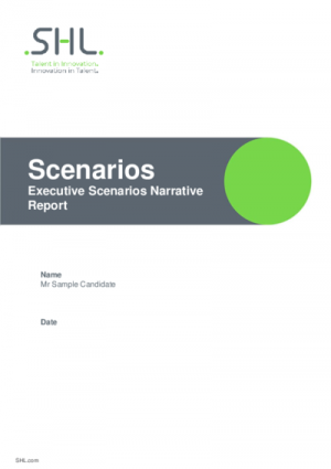 Executive Scenarios - Narrative Report English International